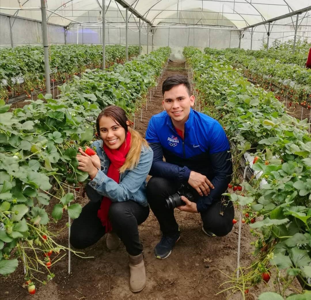 10-propiedades-y-beneficios-de-comer-fresas-