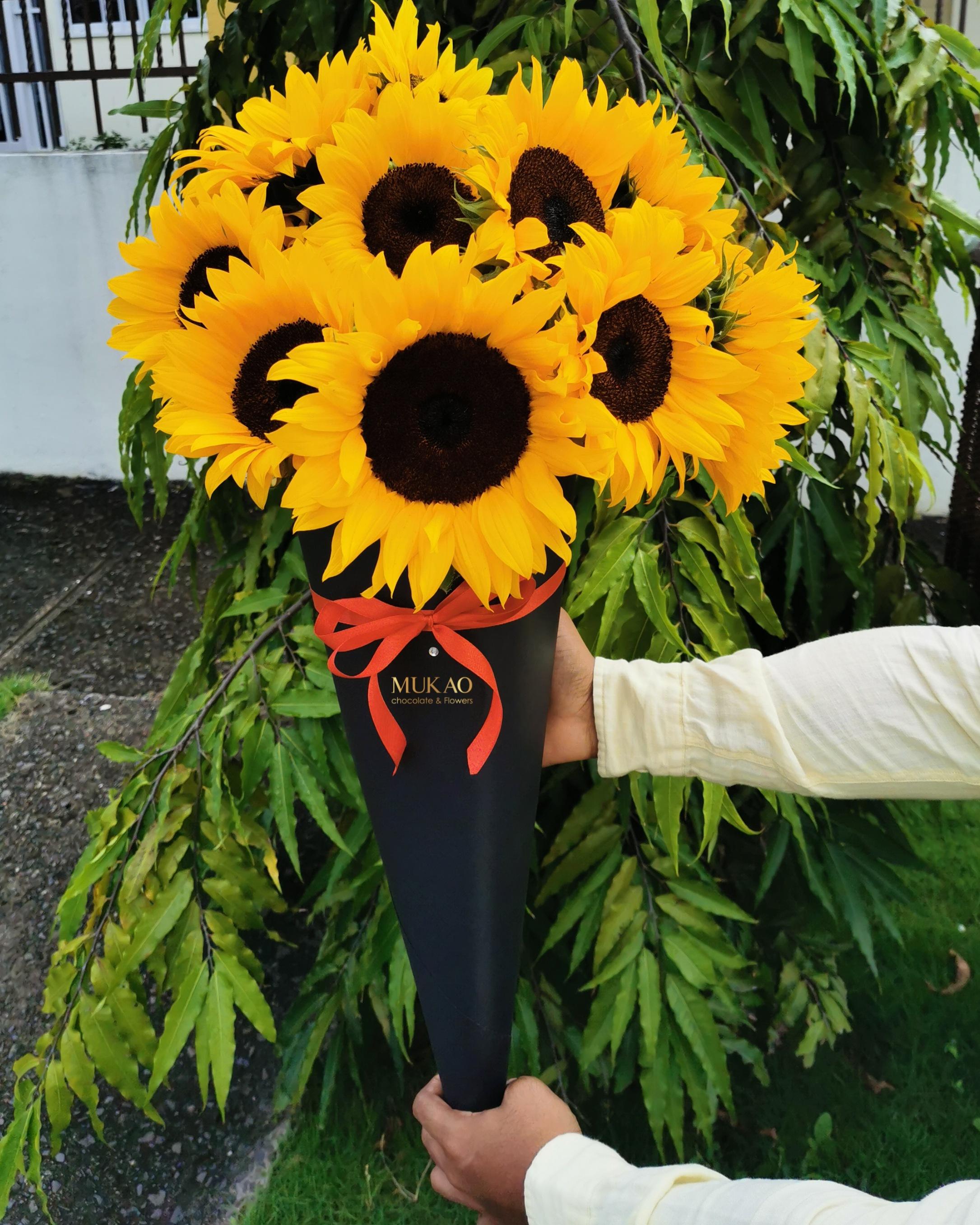 que-flores-regalar-en-cada-ocasion